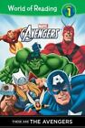 These Are Avengers by Thomas Macri (Hardback, 2014)