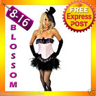 8811 Sexy Burlesque Pink Moulin Corset Tutu 8 10 12 14