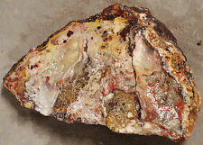 Mexican Crazy Lace Agate 2 pounds 1 ounces Lapidary Slabbing Cabbing Tumbling