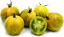 Tomate abracazebra graines vert avec des rayures tomates bio Ukraine 20 Graines d