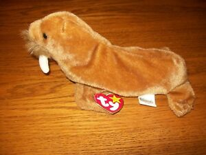 c55449e9929 Image is loading Authentic-1999-TY-Beanie-Babies-Paul-the-Walrus-