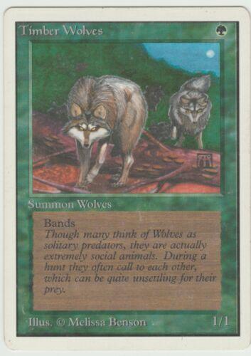 Unlimited  Timber Wolves  MTG    Magic  Rare