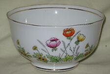 SUPERB Royal Albert Crown China Springtime 1920's  English Bone China Sugar Bowl