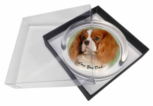 Cavalier King Charles 'Dad' Glass Paper in Gift Box Christmas P, DAD115PW