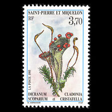 SPM 1995 - Moss and Lichens Flora Flowers - Sc 612 MNH