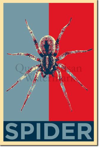 Foto Poster Regalo-Amantes de los animales Tarántula arácnido Araña Art Print /'esperanza/'