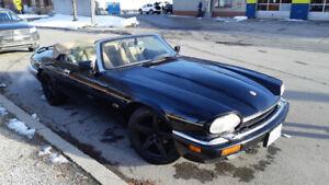 1994 Jaguar XJS V12 2 Doors Convertible/Cabriolet Sport - Low Km