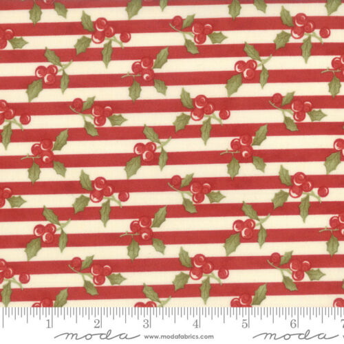 MODA Fabric ~ SNOWFALL ~ by Minick /& Simpson by the 1//2 yd 14831 12