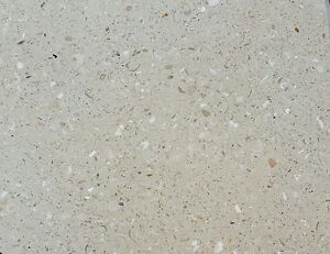 Details about TERRAZZO TILES WITH SHELLS