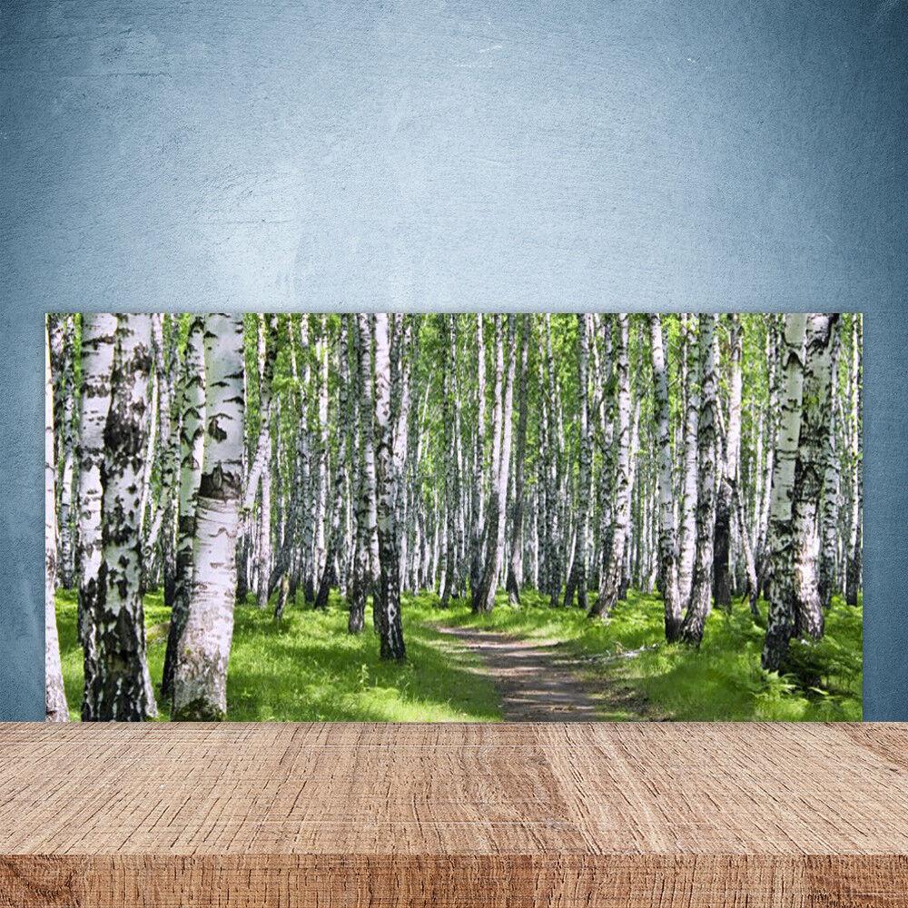 Cocina plano posterior de de de vidrio 100x50cm ESG protección contra salpicaduras bosque de naturaleza fußpfad 9d065f