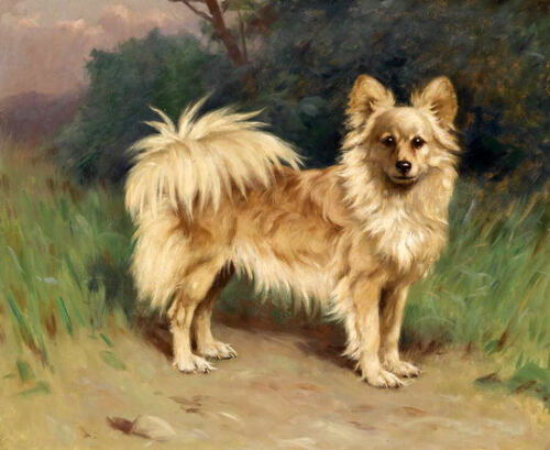 Hand painted Chinese oil painting beautiful dog animals standing in landscape