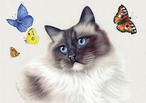 Image result for ragdoll cat art