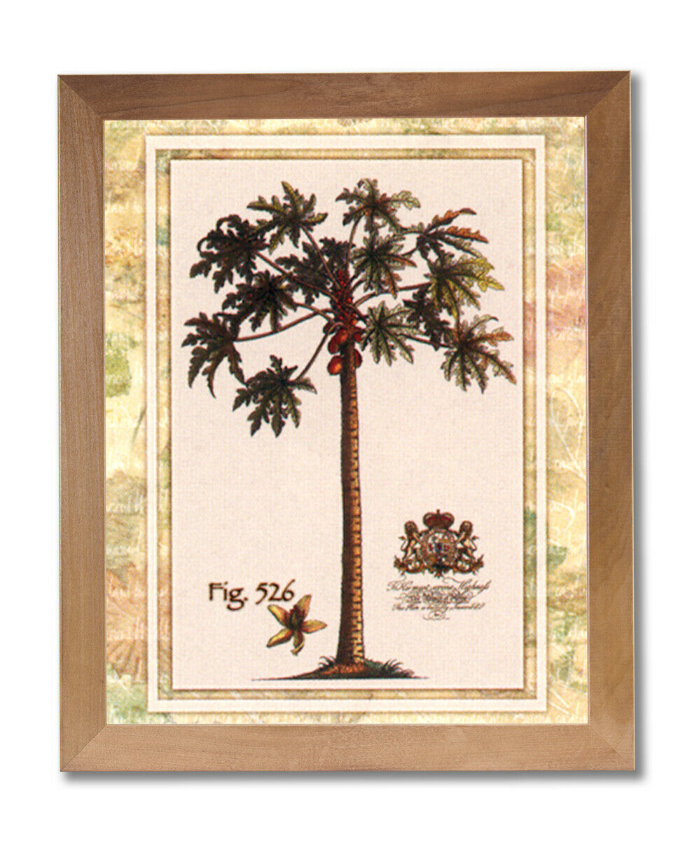 Tropical Palm Tree Fig 526 Contemporary Wall Picture Honey Framed Art Print