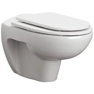 Ideal Standard Sedile Wc Artigianale In Legno Poliestere Per Vaso Ala Ebay