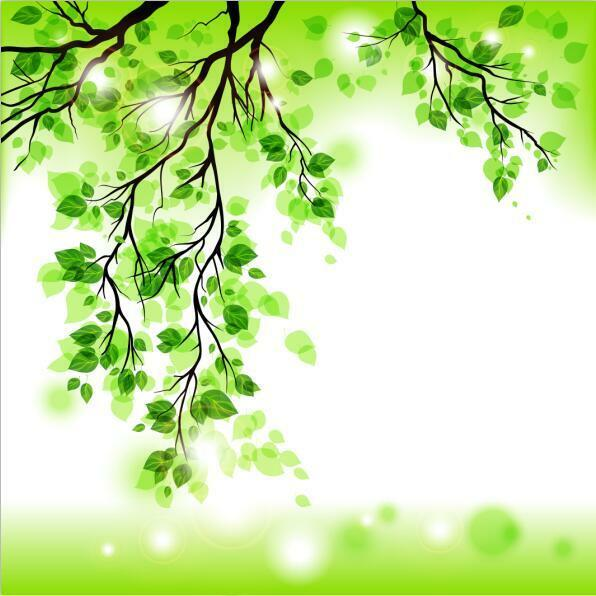 3D Hngende Zweige 29 Fototapeten Wandbild Fototapete Bild Tapete Familie Kinder