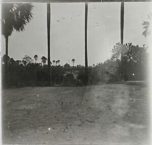 Africa Gambia ? Foto Q1 Placca Lente Stereo Positive Vintage Ca 1920