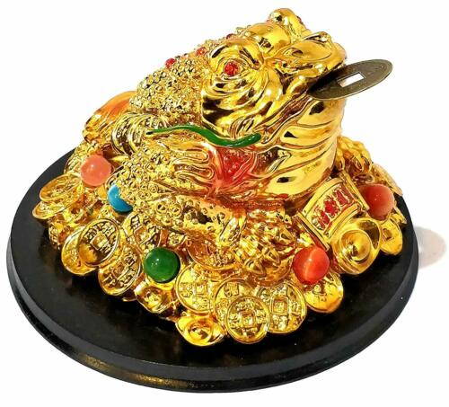 Exclusive Large Money Feng Shui Golden 3 Legged Lucky Frog Toad with Coin Statue