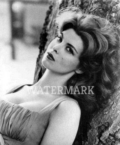 TINA LOUISE GINGER OF GILLIGAN/'S ISLAND AGAINST TREE  PUBLICITY PHOTO 5 X7