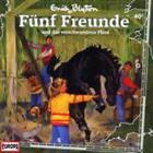 Fünf Freunde und das verschwundene Pferd 40 (2008)