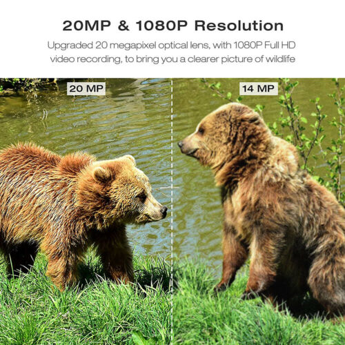Details about  /20MP Trail Camera Deer Bear Hunt Game Cam TOGUARD Trap Cam IR Night Vision 1080P