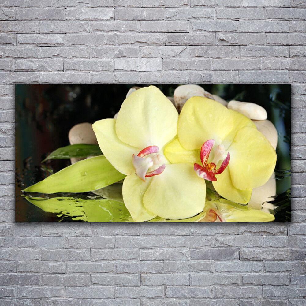 Glasbilder Wandbild Druck auf Glas 120x60 Blaumen Blatt Pflanzen