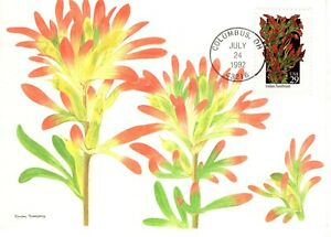 1992-COMMERATIVE-WILDFOWERS-POSTCARD-FLEETWOOD-CACHET-amp-STORY-UNADDRESSED-FDC