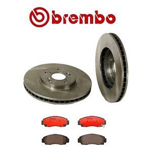 Set of 2 Brembo Front Brake Rotors /& Pads Kit for Acura CL TL Honda Acoord V6