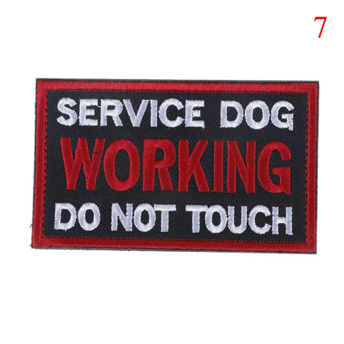 Embroidery patch pet service dog tactical emblem military badge JH $B