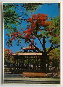 Le Kiosque A Musique Noumea Postcard (P328)