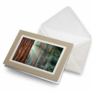 Greetings-Card-Biege-Forest-Tree-Nature-Camping-3694