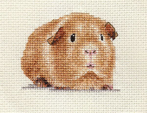 Guinea Pig Complete Counted Cross Stitch Kit Exclusive Design Ebay