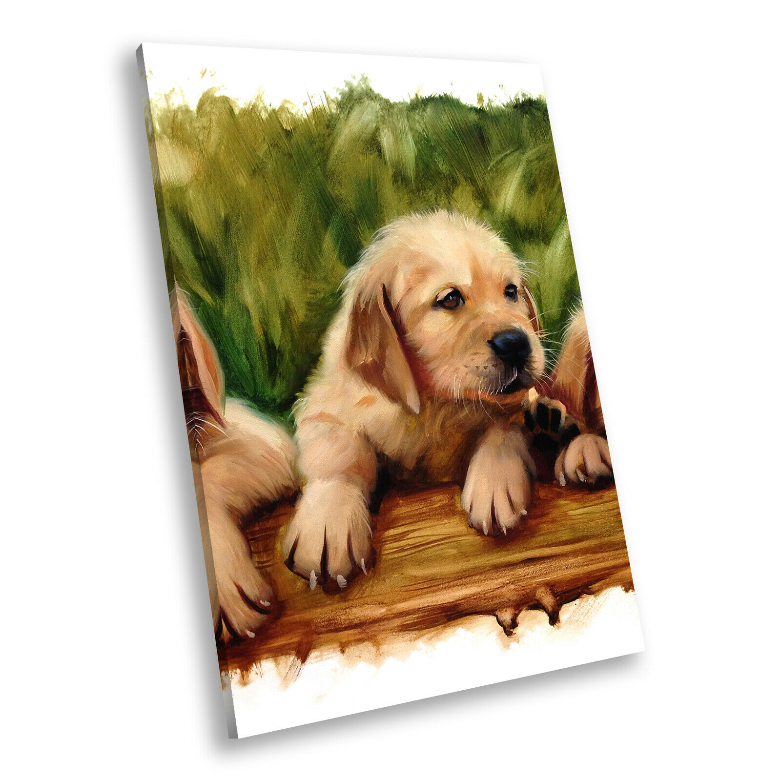 braun Puppies Cute Cool Portrait Animal Canvas Wall Art Large Picture Prints