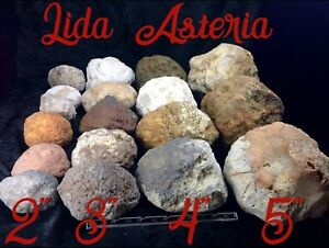 4-Gift-Break-Your-Own-Unopened-Geodes-2-034-3-034-4-034-5-034-Whole-Kentucky-Crystal-Gem