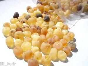 1 Klemme Barock Bernstein Roh Naturbernstein gebohrt auffädeln 30 perlen