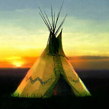 R Tom Gilleon L'Avocat, Tipi, Native American, Snake Lawyer, giclee canvas #3/45