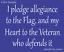 STENCIL-Pledge-Allegianc-Flag-Veteran-Defend-Patriotic-Military-Army-Marine-Sign
