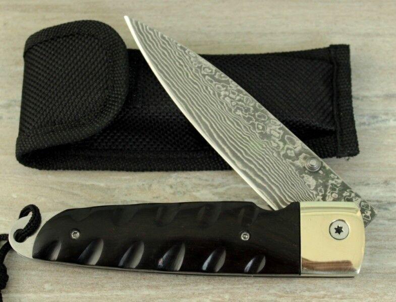 Grande di coltelli damasco acquaviti di ottima qualità vg10 pattini bufali CORNO rostfrei