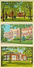 Hickory NC Lendir Rhyne College Collector's Set of Three