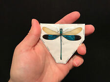 Entomologie Insecte Libellule dragonfly Neurobasis chinensis!! TOP QUALITY!