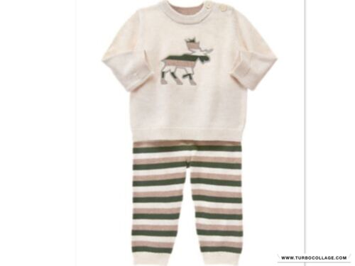 NEW GYMBOREE  Boys  Knit Outfit Forest Sprouts  NWT SIZE 12-18 MONTHS