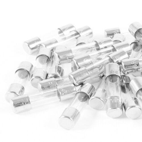 20Pcs Quick Fast Blow Fuse Glass Tube Fuses 5x20mm 2A 250V