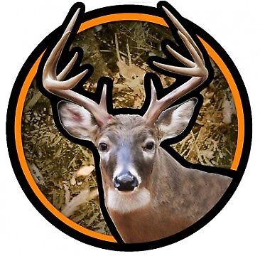 Buck Deer TUMBLER DECAL