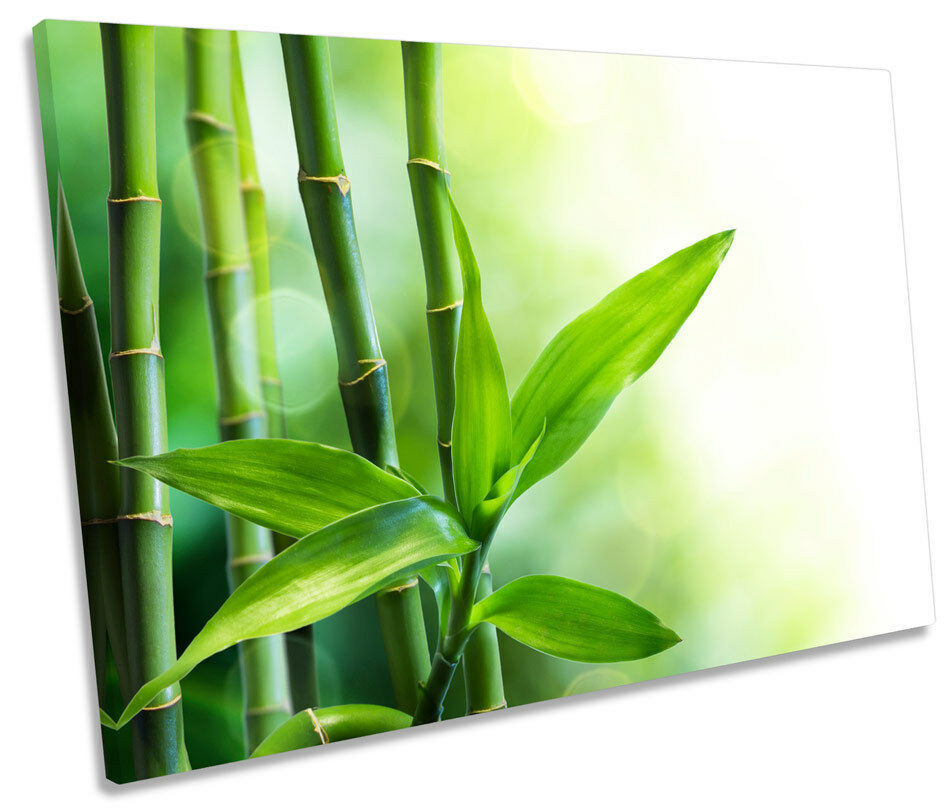 Bamboo Floral  SINGLE CANVAS WALL ART Picture Print