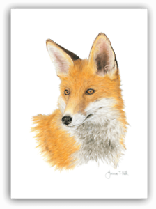 WILD ANIMALS CARDS QUALITY PRINTED ORIGINAL DRAWING WITH FULL BREED DESCRIPTION