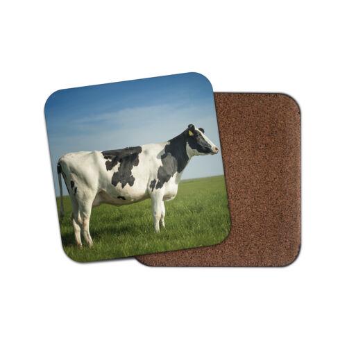 Superbe vache laitière Coaster-Bovins ferme agriculture agriculteur Cool Animaux Cadeau #15895