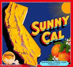 Irwindale Azusa Sunnycal 2 Orange Citrus Fruit Crate Label Vintage Art Print