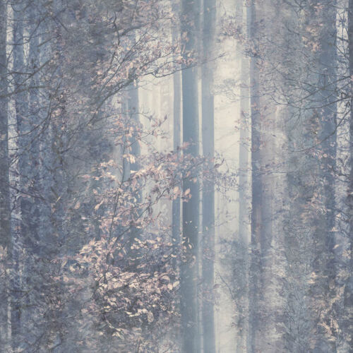 WOODLAND TREES FORREST QUALITY DESIGNER FEATURE VINYL WALLPAPER UGEPA L30509