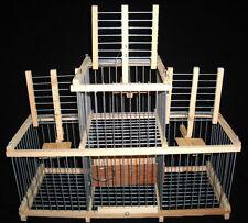 Trap-Käfig für Vögel