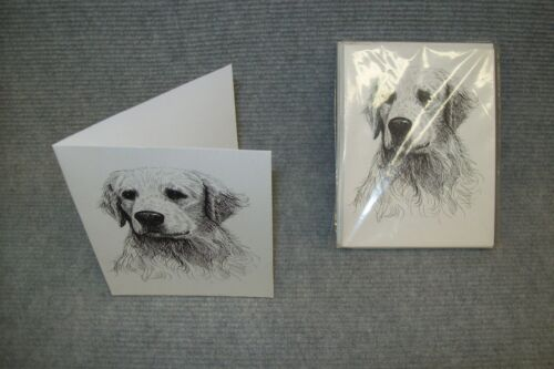 Note Cards Greeting Cards.10 pk. Golden Retriever Pen /& Ink Stationary Cards