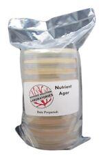 Sterilized Nutrient Agar 10 100mm X 15mm Plates 10 Sterile Cotton Swabs